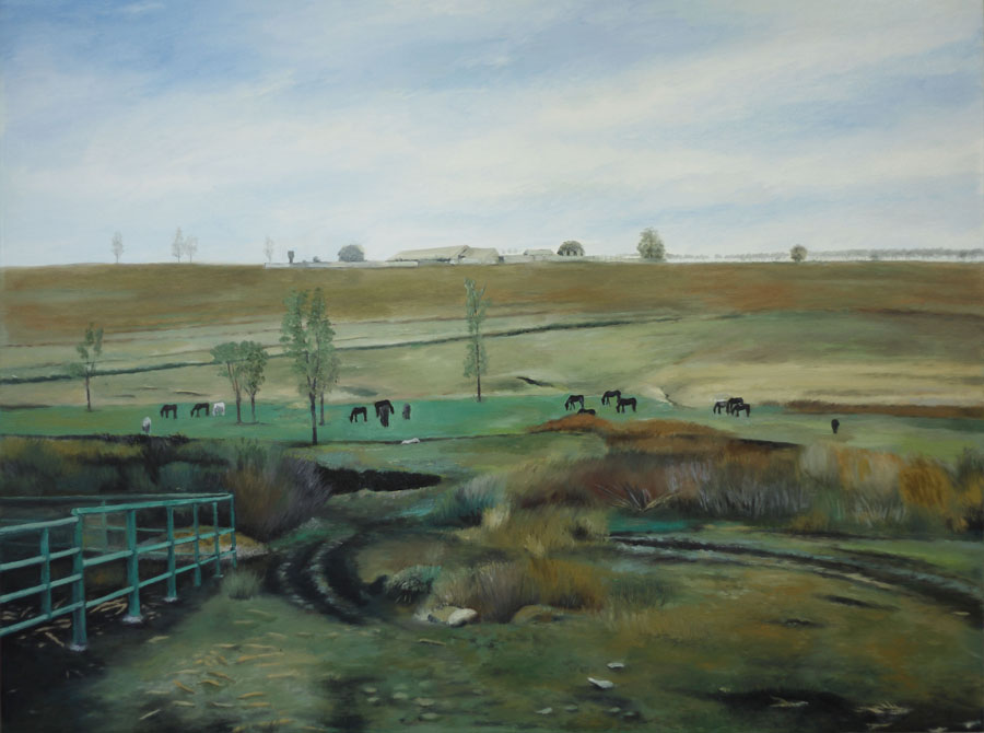 Landscape, Chadir Outskirts (2010) Toronto - Oil on canvas
